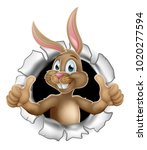 easter bunny rabbit breaking... | Shutterstock .eps vector #1020277594