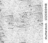 texture grunge monochrome.... | Shutterstock . vector #1020303448