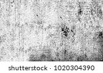 black and white texture of... | Shutterstock . vector #1020304390