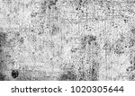 black and white texture of... | Shutterstock . vector #1020305644