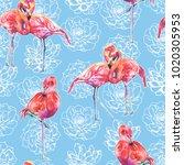 Succulent And Flamingo...