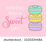 cute macarons illustration with ... | Shutterstock .eps vector #1020334486