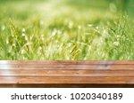 spring background table | Shutterstock . vector #1020340189