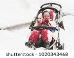 the child sits in a stroller... | Shutterstock . vector #1020343468