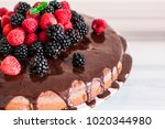 chocolate cake with berries ... | Shutterstock . vector #1020344980