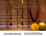 sports rents and the swedish... | Shutterstock . vector #1020350056