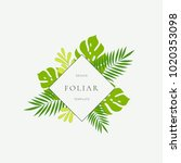 tropical leaves fashion sign ... | Shutterstock .eps vector #1020353098