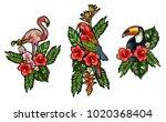flamingo  parrot  toucan... | Shutterstock .eps vector #1020368404