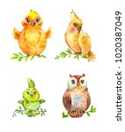watercolor funny little birds... | Shutterstock . vector #1020387049