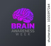 brain awareness week icon... | Shutterstock .eps vector #1020397264