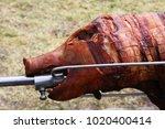 suckling pig  spanferkel ... | Shutterstock . vector #1020400414