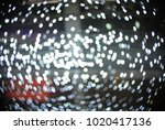 blurred white lights in circle | Shutterstock . vector #1020417136