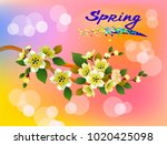 fresh spring background with... | Shutterstock .eps vector #1020425098