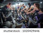 excitement sporty people... | Shutterstock . vector #1020429646