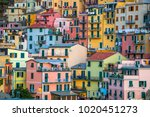 close up of the colorful... | Shutterstock . vector #1020451273