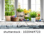 table background of free space... | Shutterstock . vector #1020469723
