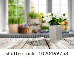 table background of free space... | Shutterstock . vector #1020469753
