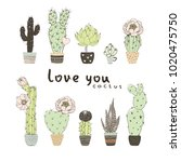 collection of blossom cactuses... | Shutterstock .eps vector #1020475750