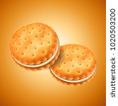 detailed sandwich cookies or... | Shutterstock .eps vector #1020503200