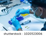 the asian scientists injected... | Shutterstock . vector #1020523006