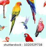 vector hand drawn seamless ... | Shutterstock .eps vector #1020529738