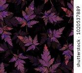 falling leaves. botanical... | Shutterstock . vector #1020537889