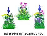 flowerbed set with flowers... | Shutterstock .eps vector #1020538480