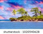 jamaica. the sea in the sunny... | Shutterstock . vector #1020540628