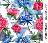 wildflower red and blue peonies ... | Shutterstock . vector #1020552244