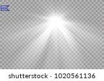 vector transparent sunlight... | Shutterstock .eps vector #1020561136