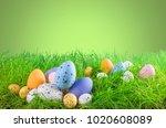 colorful easter egg on grass | Shutterstock . vector #1020608089