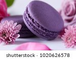 bright food photography of...   Shutterstock . vector #1020626578