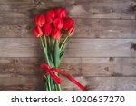 spring flowers. bouquet of red... | Shutterstock . vector #1020637270