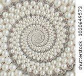 pearls and diamonds jewels... | Shutterstock . vector #1020649573