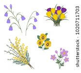 set of spring flowers on a...   Shutterstock .eps vector #1020711703