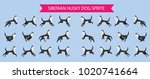 siberian husky dog sprite for... | Shutterstock .eps vector #1020741664