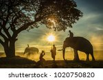 silhouette of elephants   trees ... | Shutterstock . vector #1020750820