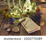 witch manuscript with magic... | Shutterstock . vector #1020770389