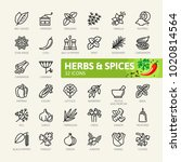 spices  condiments and herbs    ... | Shutterstock .eps vector #1020814564