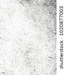 distressed overlay texture of...   Shutterstock .eps vector #1020877003