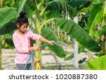 asian girl watering banana tree ...   Shutterstock . vector #1020887380