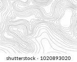 abstract black and white... | Shutterstock .eps vector #1020893020