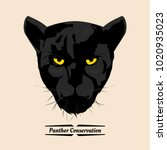 panther conservation  head...   Shutterstock .eps vector #1020935023