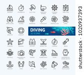 scuba diving  snorkeling... | Shutterstock .eps vector #1020937393