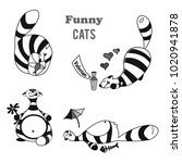 black and white cat and his... | Shutterstock .eps vector #1020941878