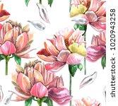 watercolor seamless pattern of ... | Shutterstock . vector #1020943258
