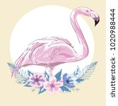 pink flamingo vector... | Shutterstock .eps vector #1020988444