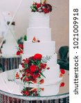 wedding cake with red fresh... | Shutterstock . vector #1021009918
