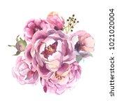 watercolor romantic bouquet of... | Shutterstock . vector #1021020004