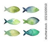 watercolor illustration. set of ... | Shutterstock . vector #1021020010